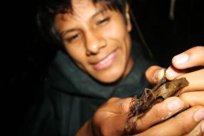 scorpion-and-jefferson